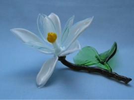 Gėlės iš stiklo